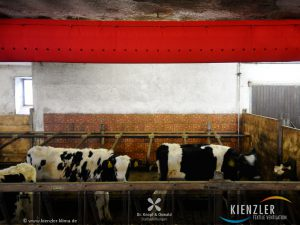 gesunde-stallbelueftung-textilschlauch-stall_08